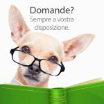 Informazioni Cani e Cuccioli