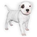 Vendita Cuccioli Staffordshire Bull Terrier